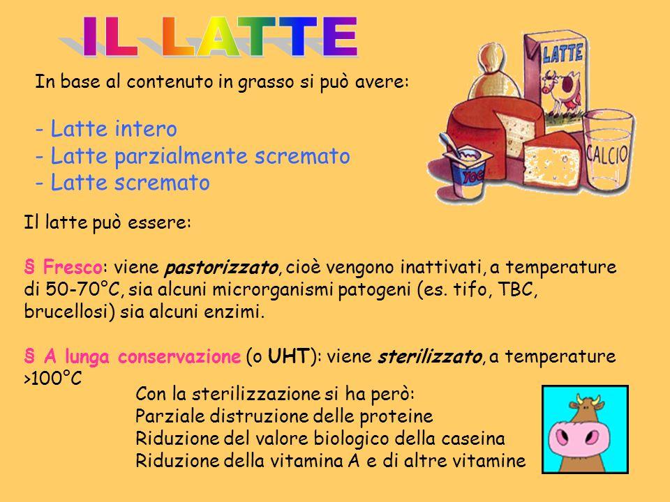 IL LATTE - Latte intero - Latte parzialmente scremato - Latte scremato