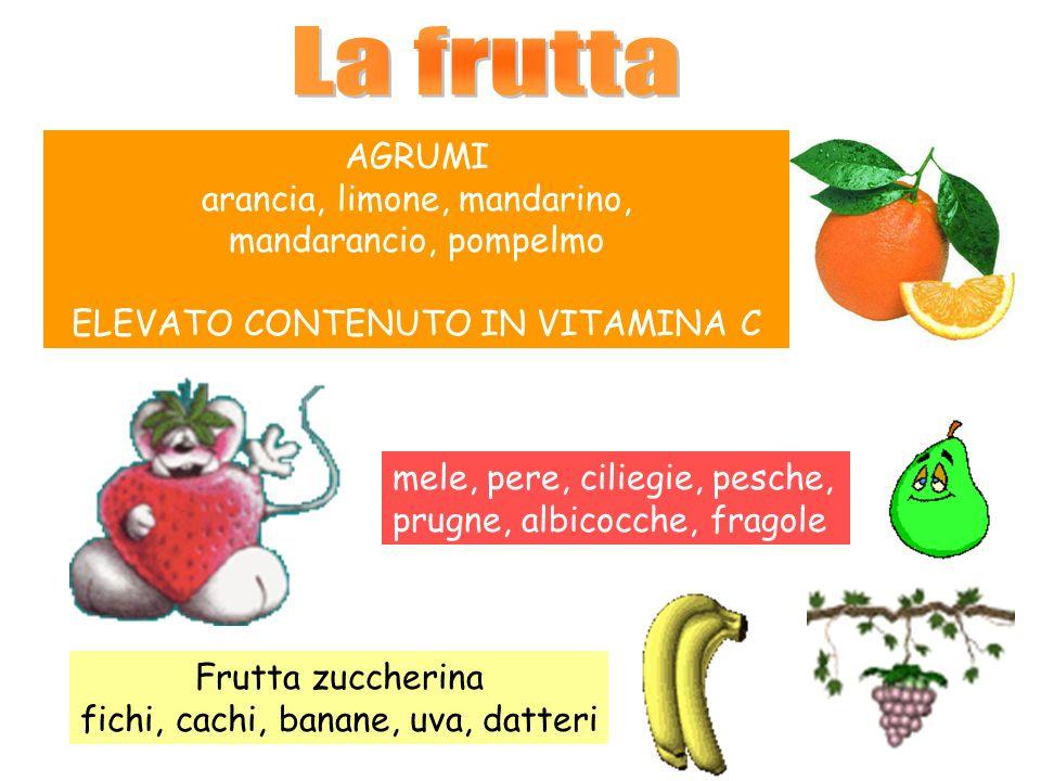 La frutta AGRUMI arancia, limone, mandarino, mandarancio, pompelmo