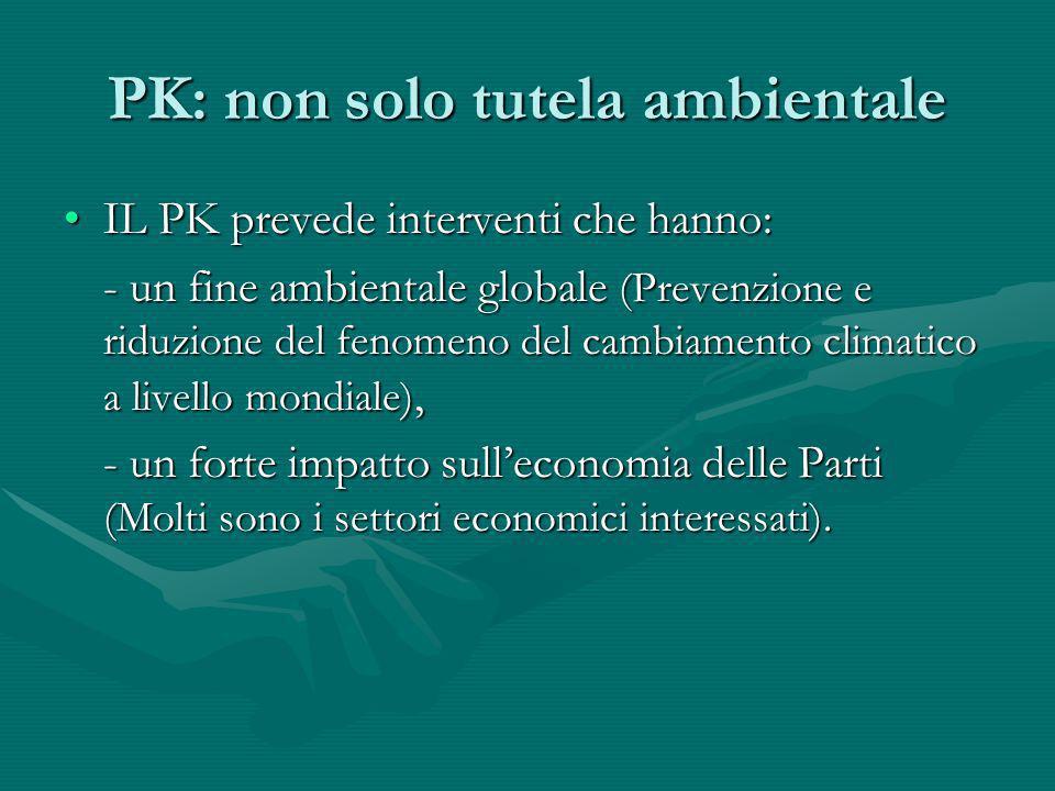 PK: non solo tutela ambientale
