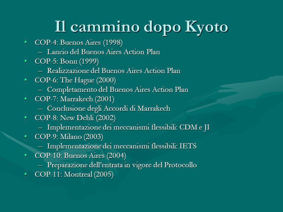 Il cammino dopo Kyoto COP-4: Buenos Aires (1998)