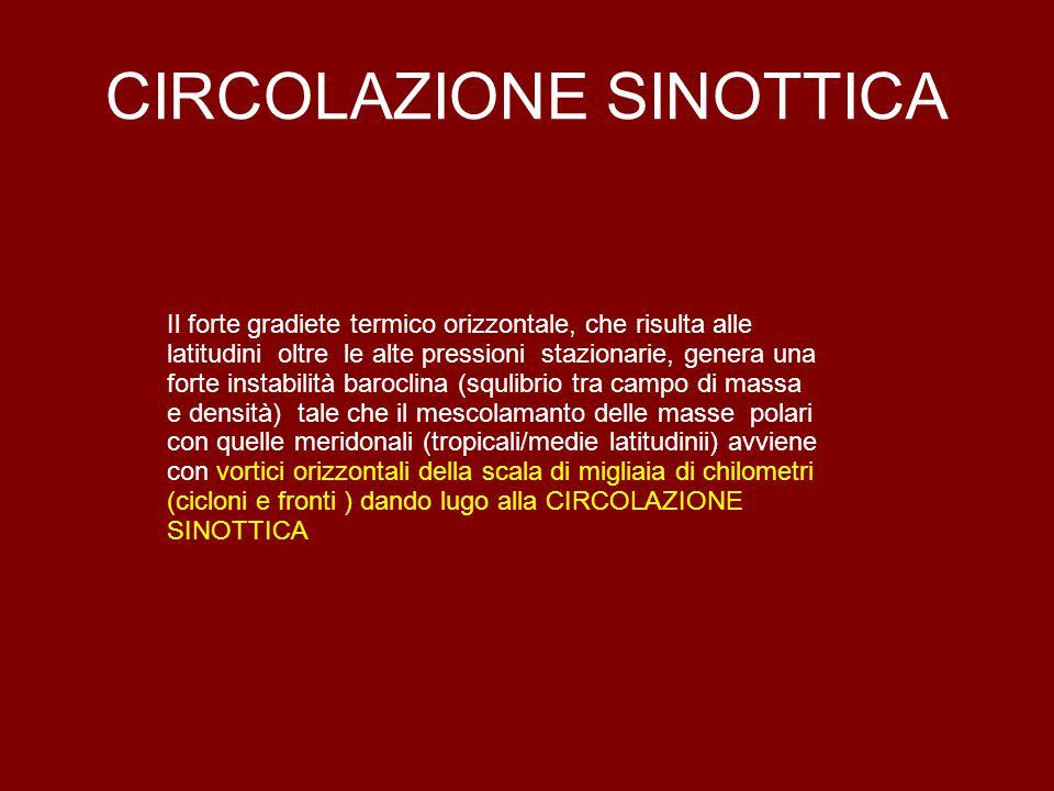 CIRCOLAZIONE SINOTTICA