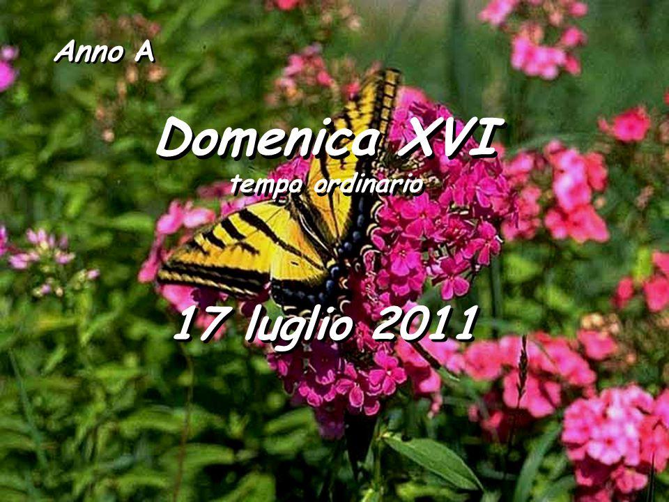Anno A Domenica XVI tempo ordinario 17 luglio 2011