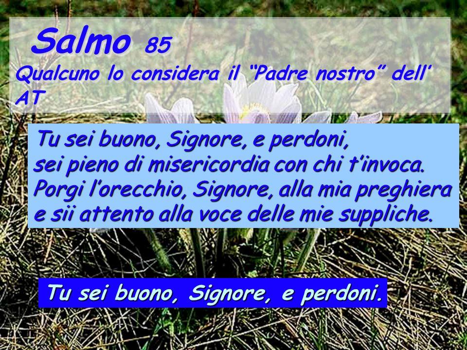 Salmo 85 Tu sei buono, Signore, e perdoni,