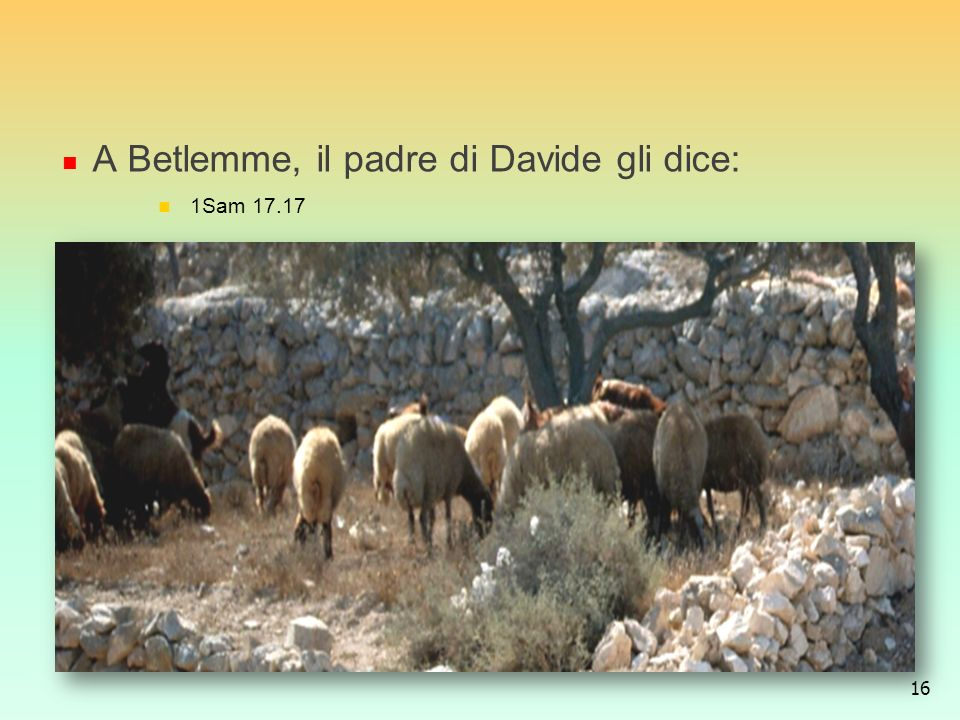 A Betlemme, il padre di Davide gli dice: