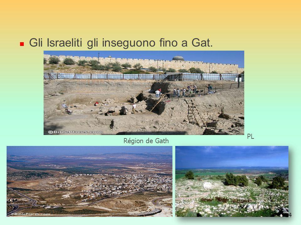 Gli Israeliti gli inseguono fino a Gat.
