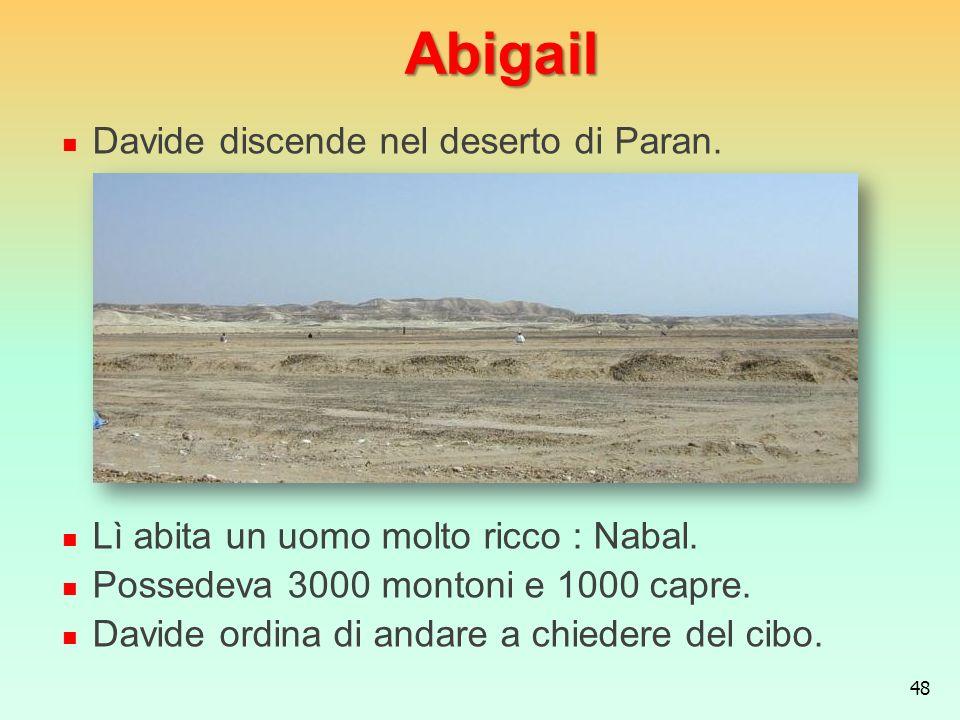 Abigail Davide discende nel deserto di Paran.
