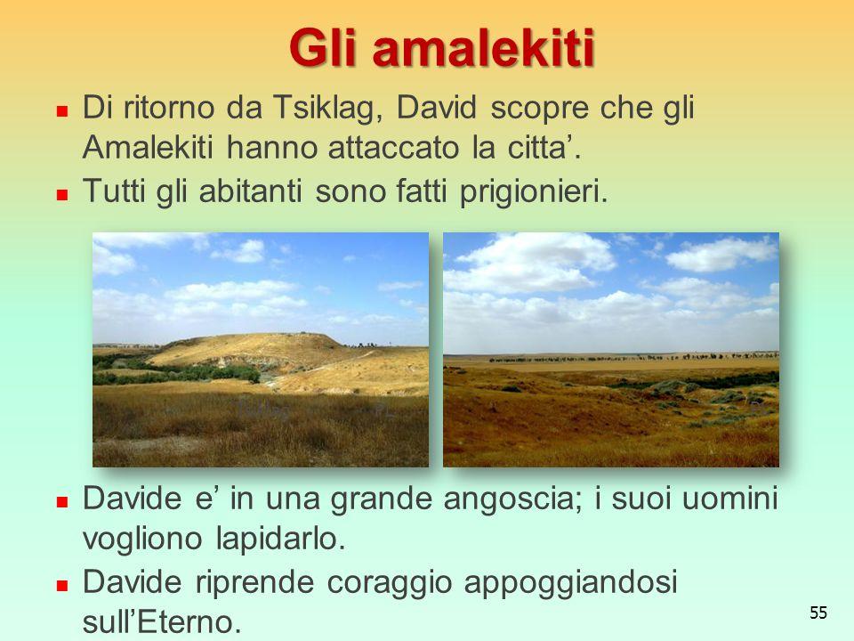 Gli amalekiti Di ritorno da Tsiklag, David scopre che gli Amalekiti hanno attaccato la citta'. Tutti gli abitanti sono fatti prigionieri.
