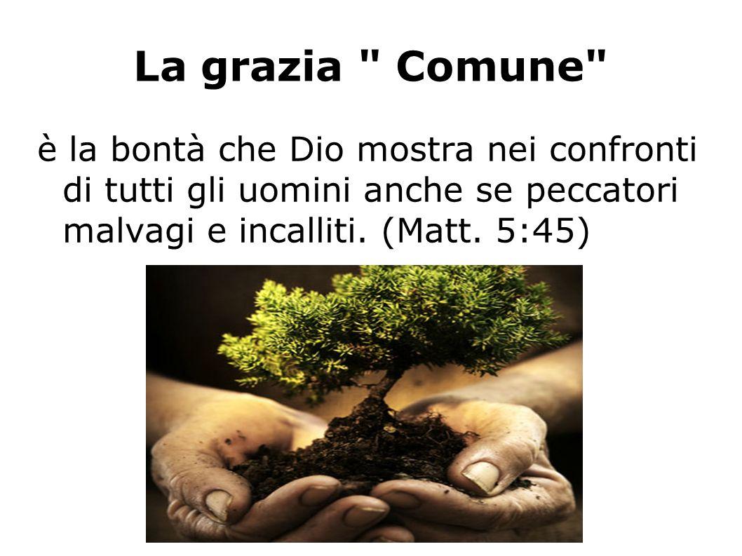 La grazia Comune è la bontà che Dio mostra nei confronti di tutti gli uomini anche se peccatori malvagi e incalliti.