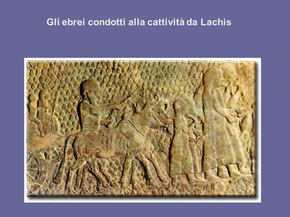 Gli ebrei condotti alla cattività da Lachis