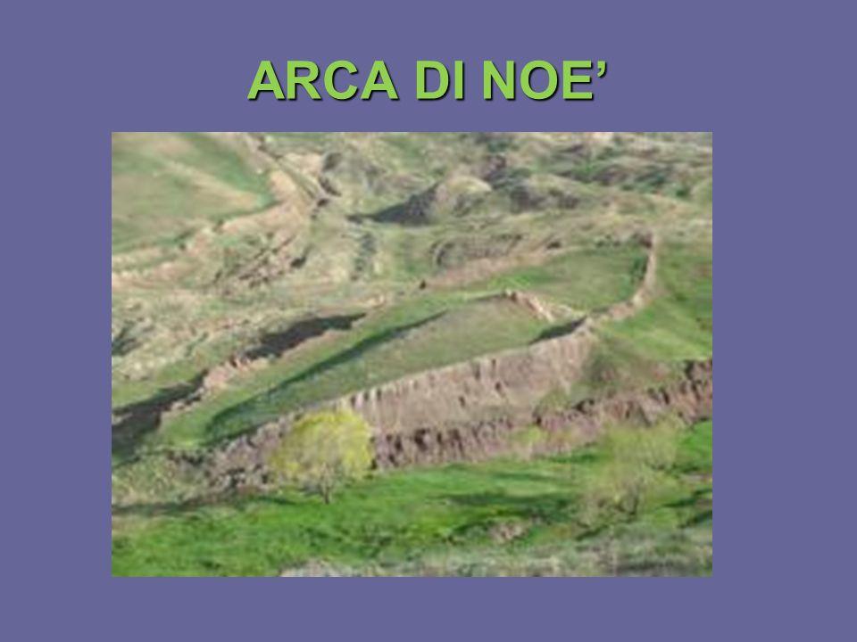 ARCA DI NOE'