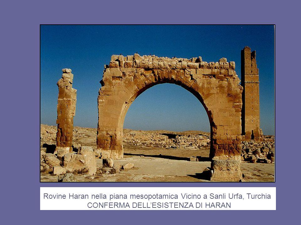 Rovine Haran nella piana mesopotamica Vicino a Sanli Urfa, Turchia