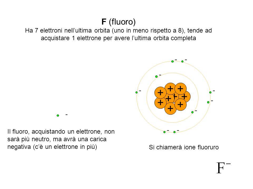 + + + + + + + + + F (fluoro) - - - - - - - - - -