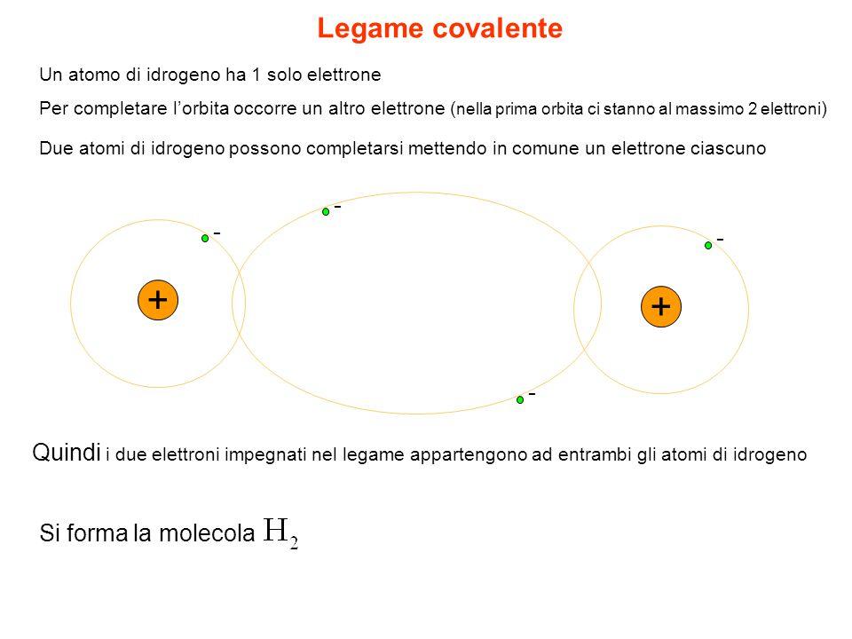 + + Legame covalente - - - -