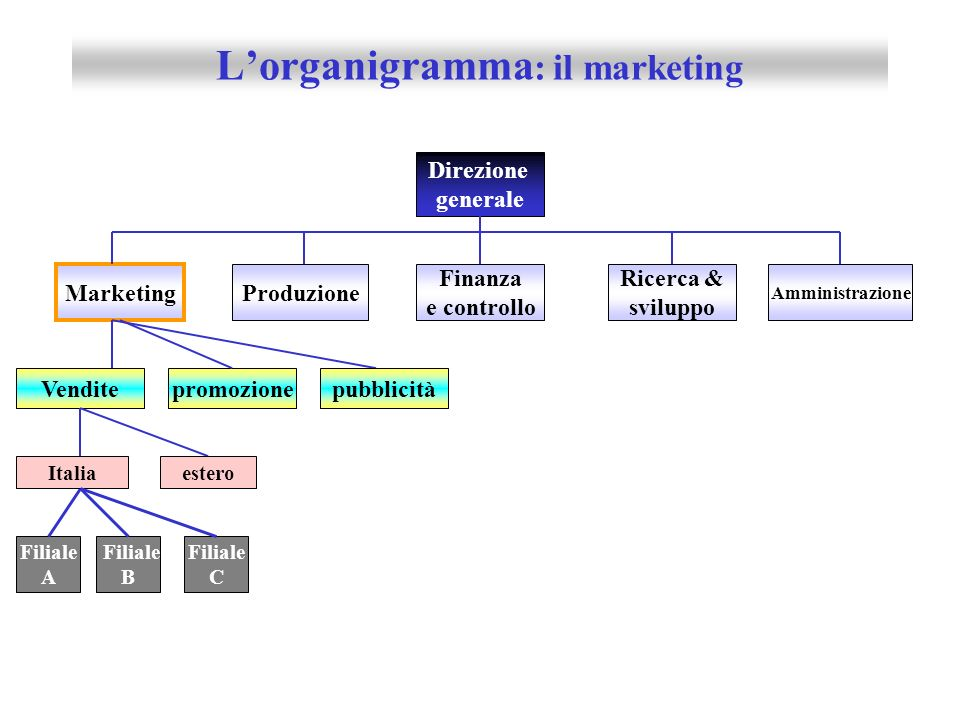 L'organigramma: il marketing