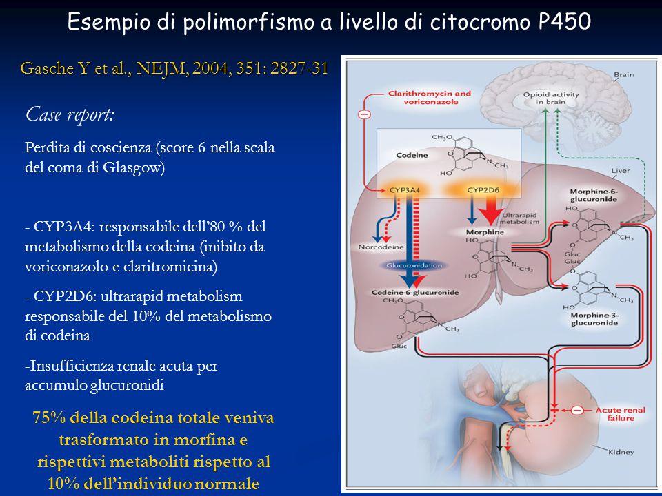 Esempio di polimorfismo a livello di citocromo P450