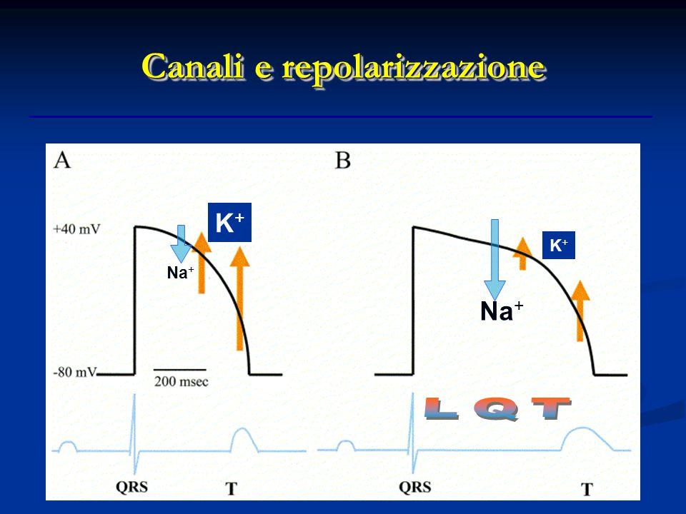 Canali e repolarizzazione