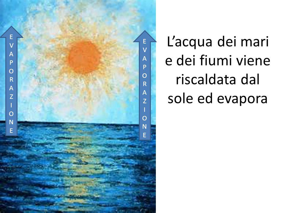 L'acqua dei mari e dei fiumi viene riscaldata dal sole ed evapora