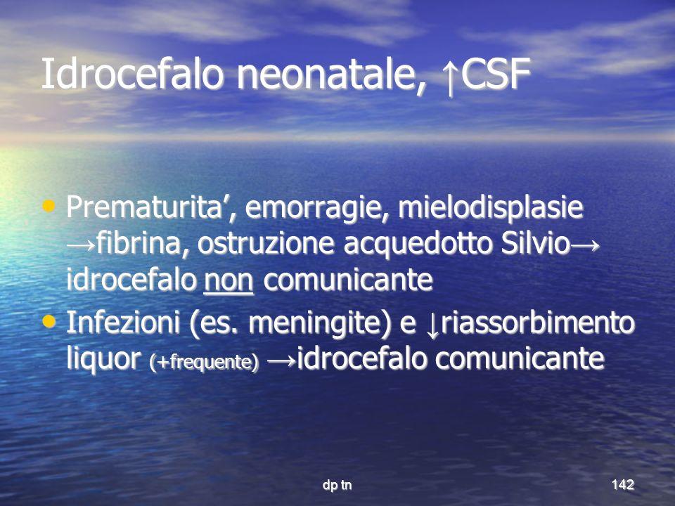 Idrocefalo neonatale, ↑CSF