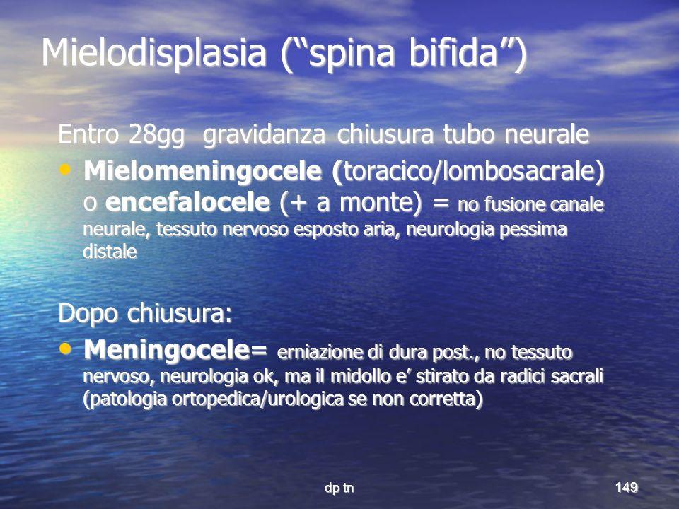 Mielodisplasia ( spina bifida )