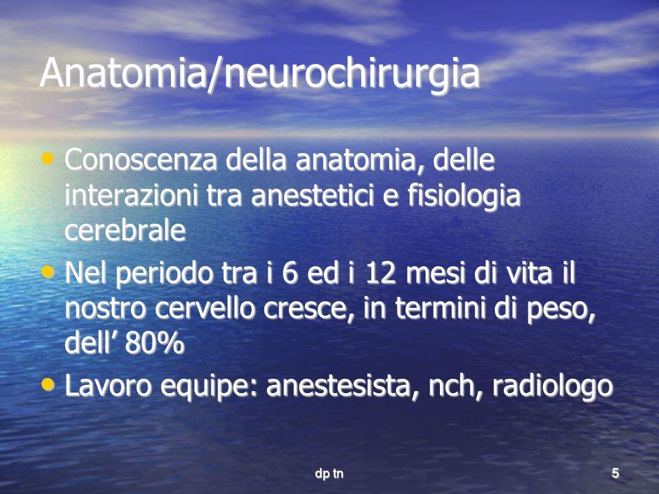 Anatomia/neurochirurgia