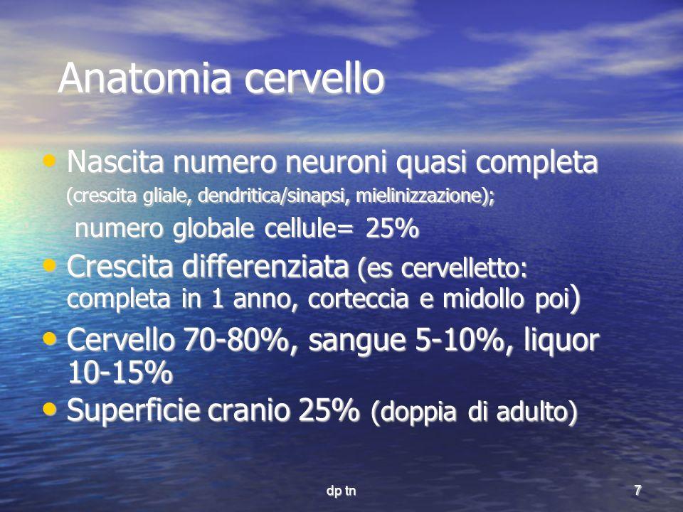 Anatomia cervello Nascita numero neuroni quasi completa (crescita gliale, dendritica/sinapsi, mielinizzazione);