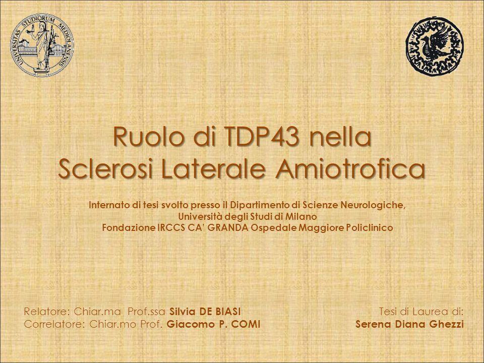 Ruolo di TDP43 nella Sclerosi Laterale Amiotrofica