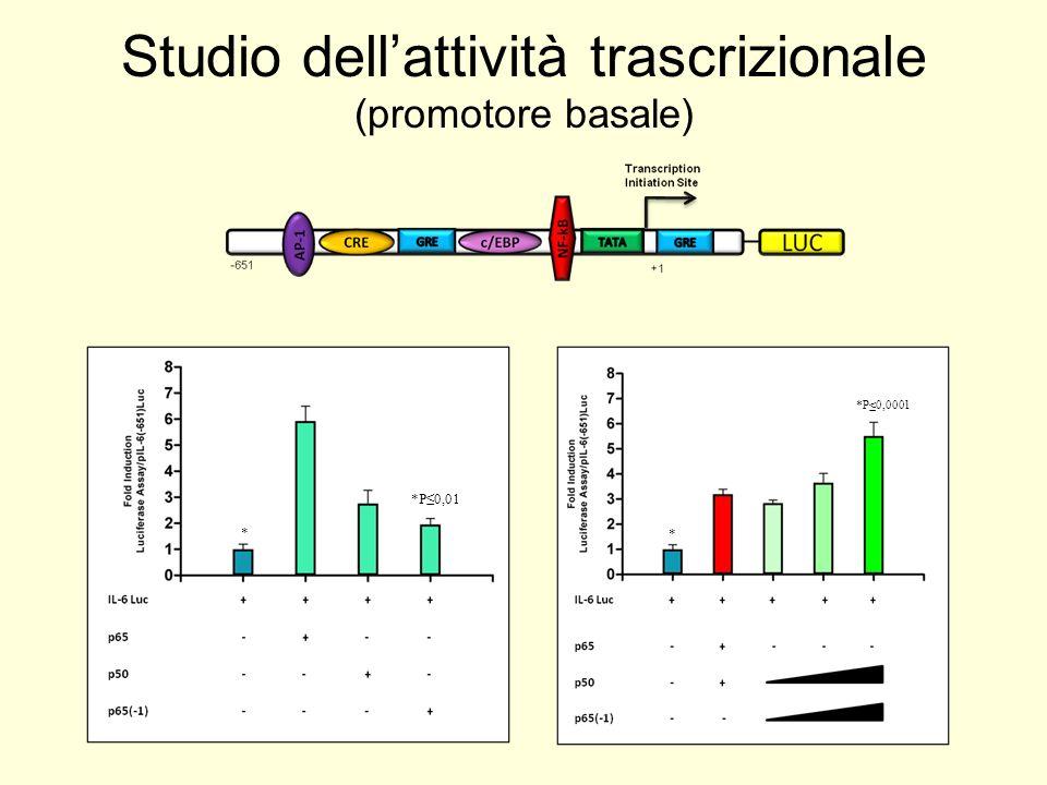 Studio dell'attività trascrizionale (promotore basale)