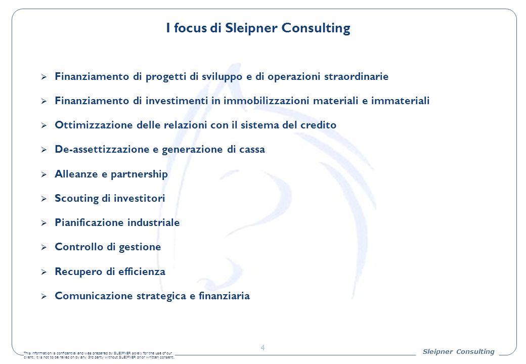 I focus di Sleipner Consulting