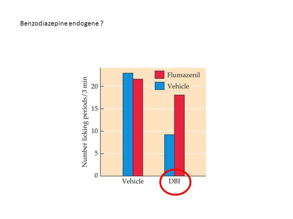 Benzodiazepine endogene