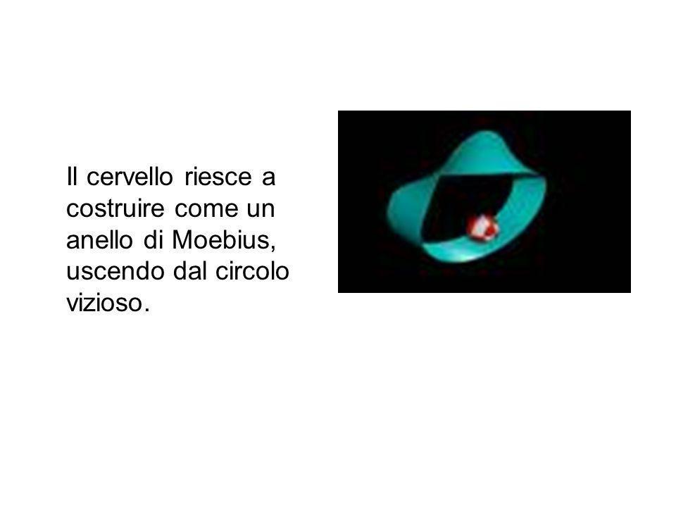 Il cervello riesce a costruire come un anello di Moebius, uscendo dal circolo vizioso.