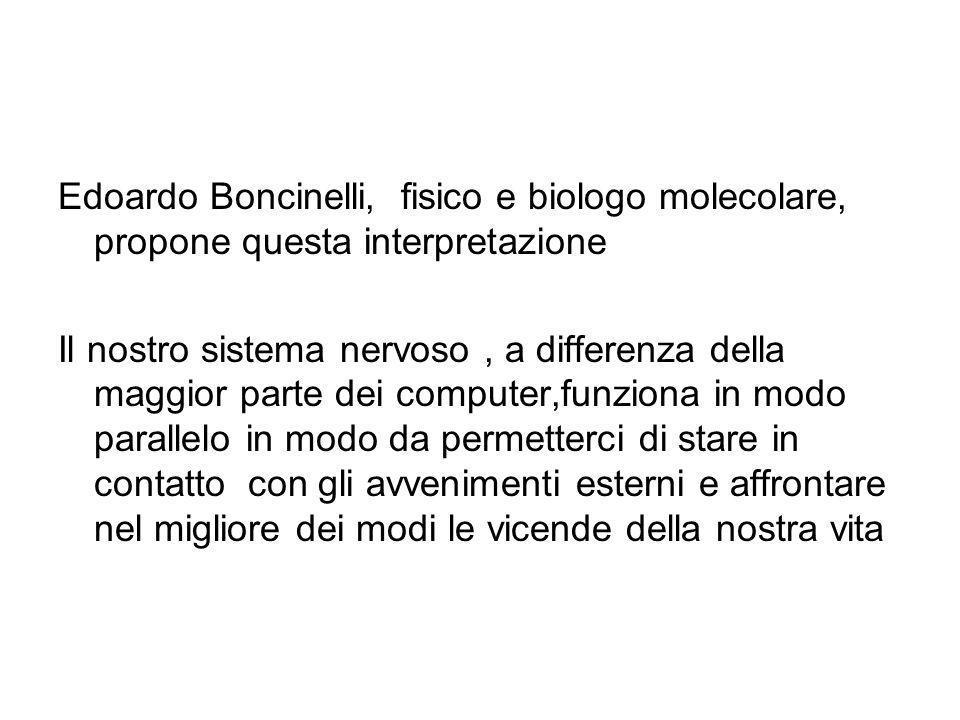 Edoardo Boncinelli, fisico e biologo molecolare, propone questa interpretazione