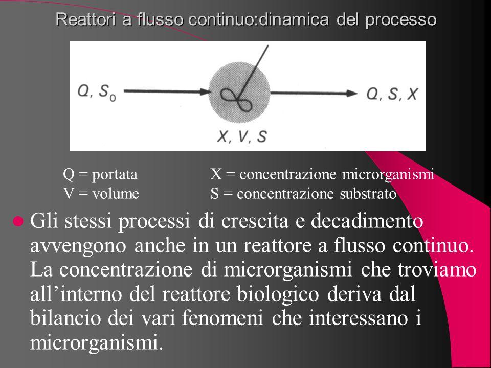 Reattori a flusso continuo:dinamica del processo