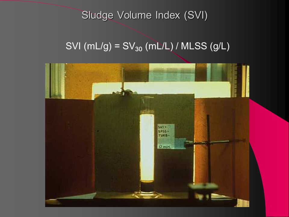 Sludge Volume Index (SVI)