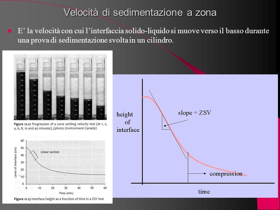 Velocità di sedimentazione a zona