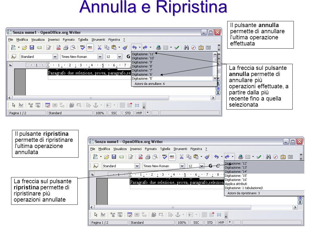 Annulla e Ripristina Il pulsante annulla permette di annullare l ultima operazione effettuata.