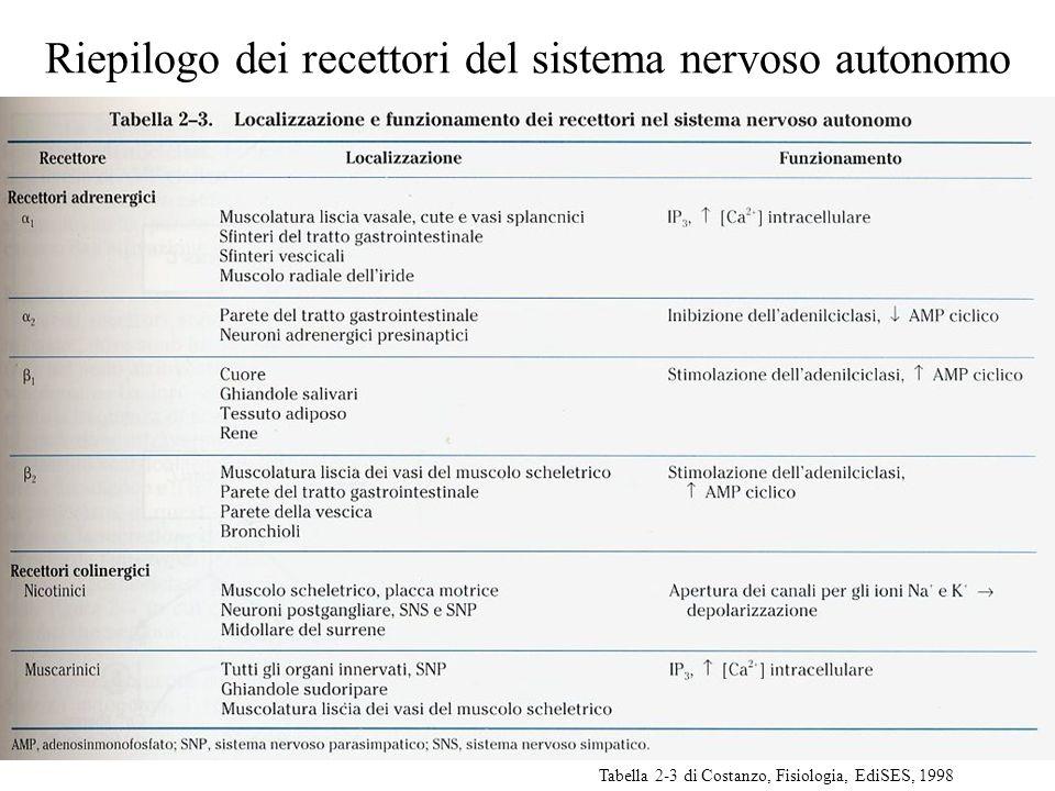 Riepilogo dei recettori del sistema nervoso autonomo