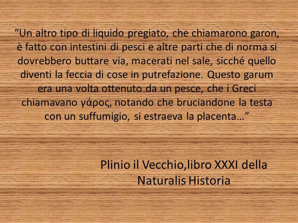 Plinio il Vecchio,libro XXXI della Naturalis Historia