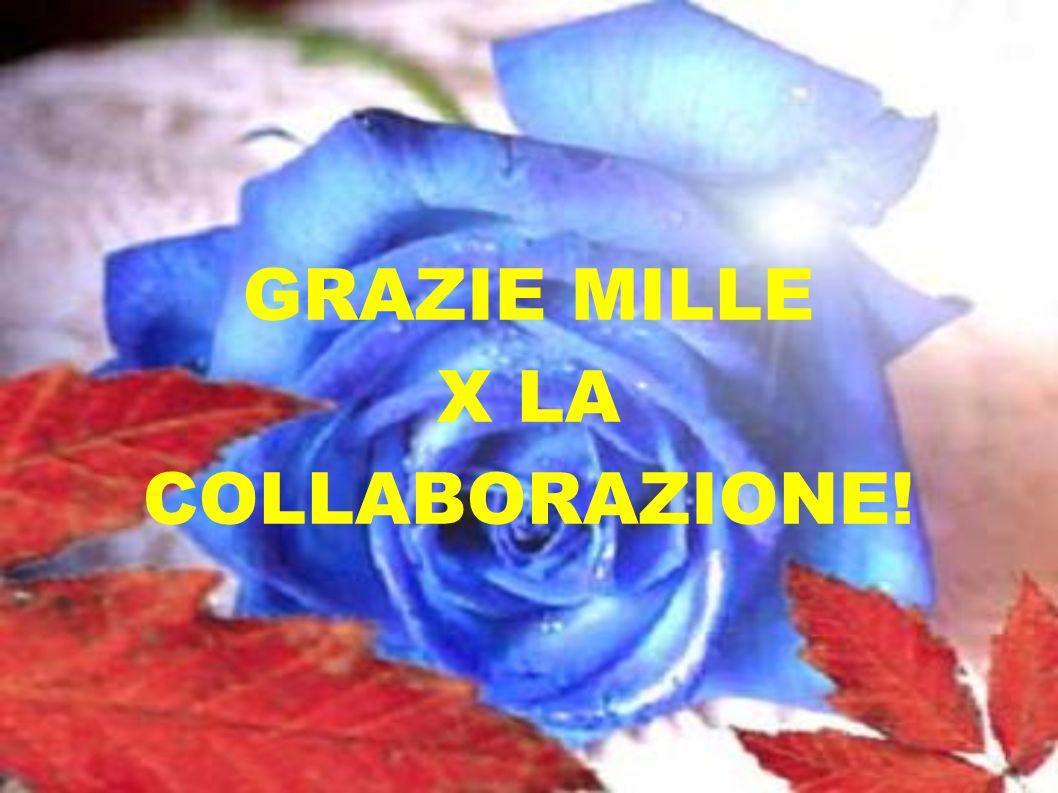 GRAZIE MILLE X LA COLLABORAZIONE!