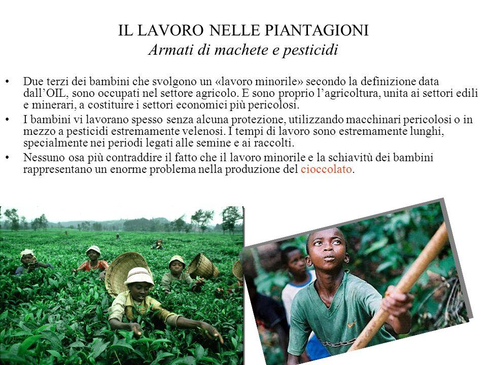 IL LAVORO NELLE PIANTAGIONI Armati di machete e pesticidi