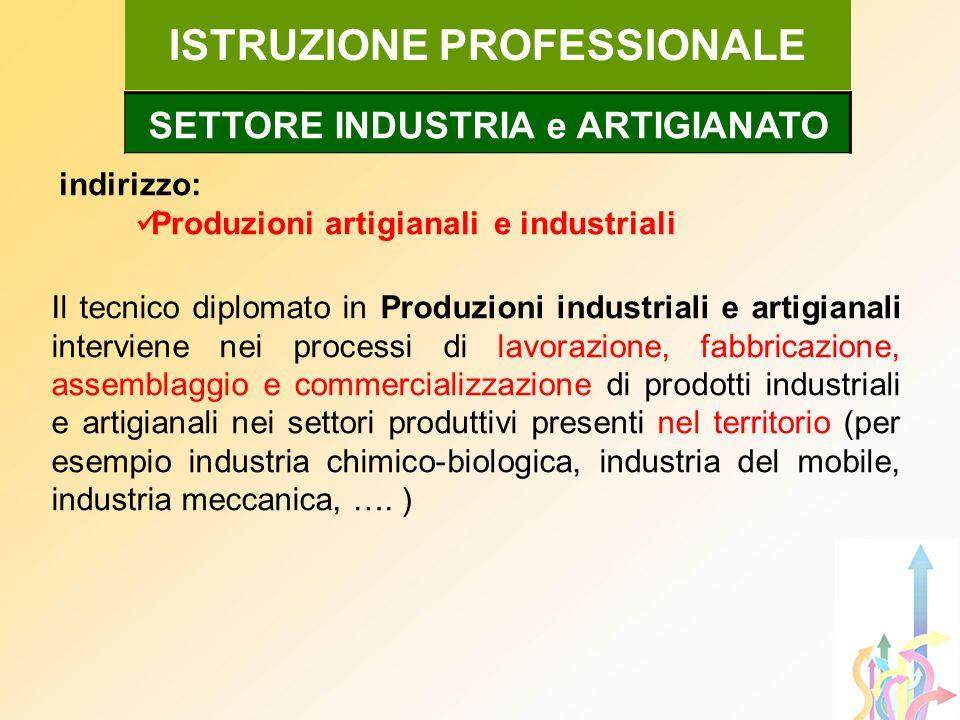 ISTRUZIONE PROFESSIONALE SETTORE INDUSTRIA e ARTIGIANATO