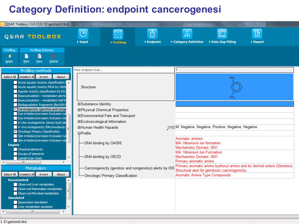 Category Definition: endpoint cancerogenesi