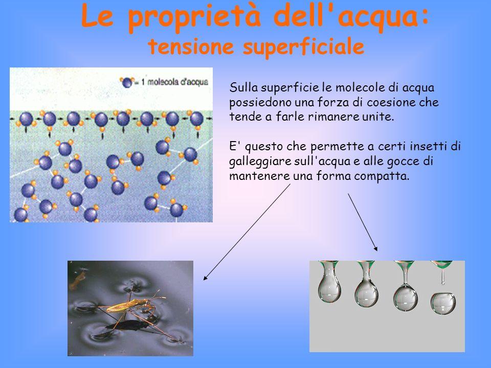 Le proprietà dell acqua: tensione superficiale