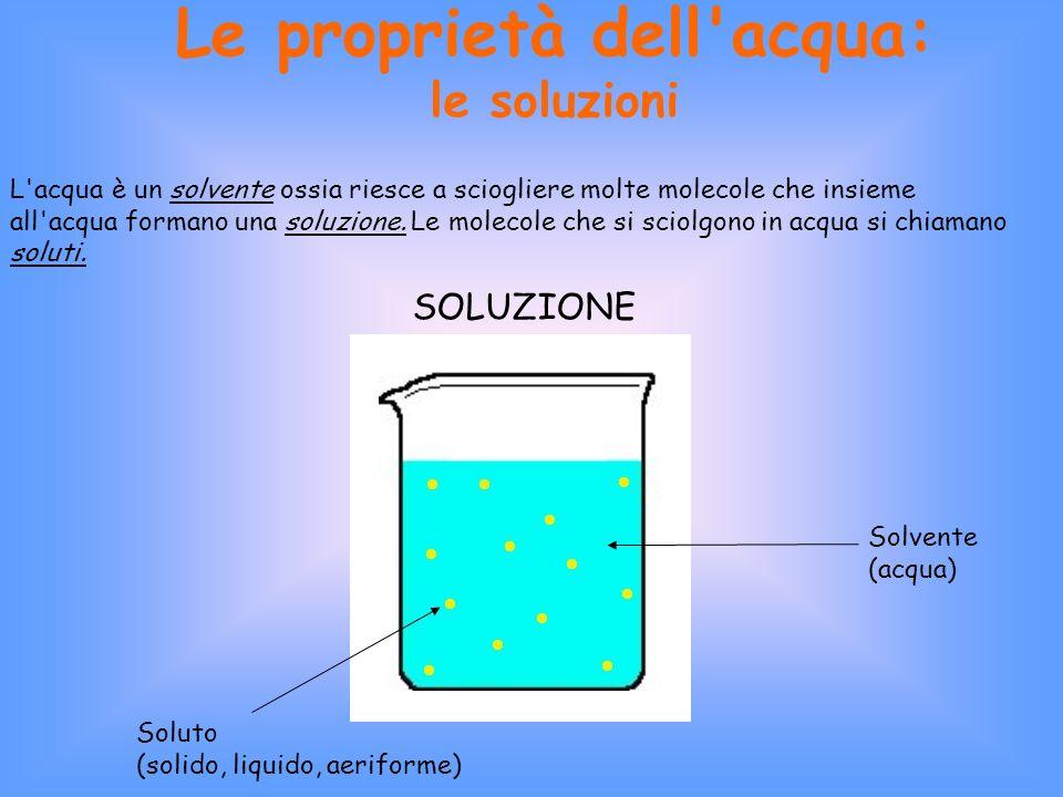 Le proprietà dell acqua: le soluzioni