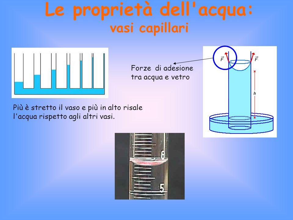 Le proprietà dell acqua: vasi capillari