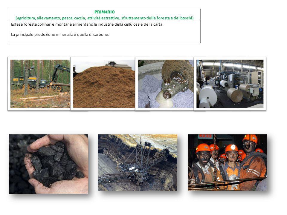 PRIMARIO (agrioltura, allevamento, pesca, caccia, attività estrattive, sfruttamento delle foreste e dei boschi)