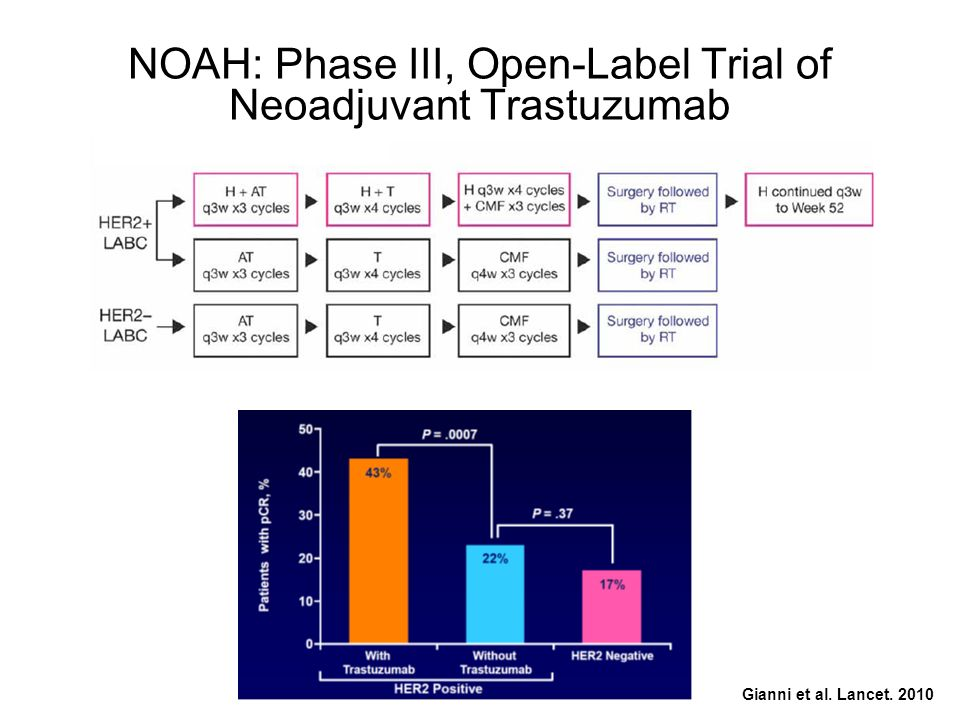 NOAH: Phase III, Open-Label Trial of Neoadjuvant Trastuzumab