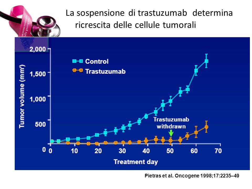 La sospensione di trastuzumab determina ricrescita delle cellule tumorali