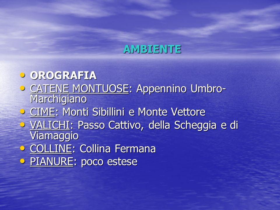 AMBIENTEOROGRAFIA. CATENE MONTUOSE: Appennino Umbro-Marchigiano. CIME: Monti Sibillini e Monte Vettore.