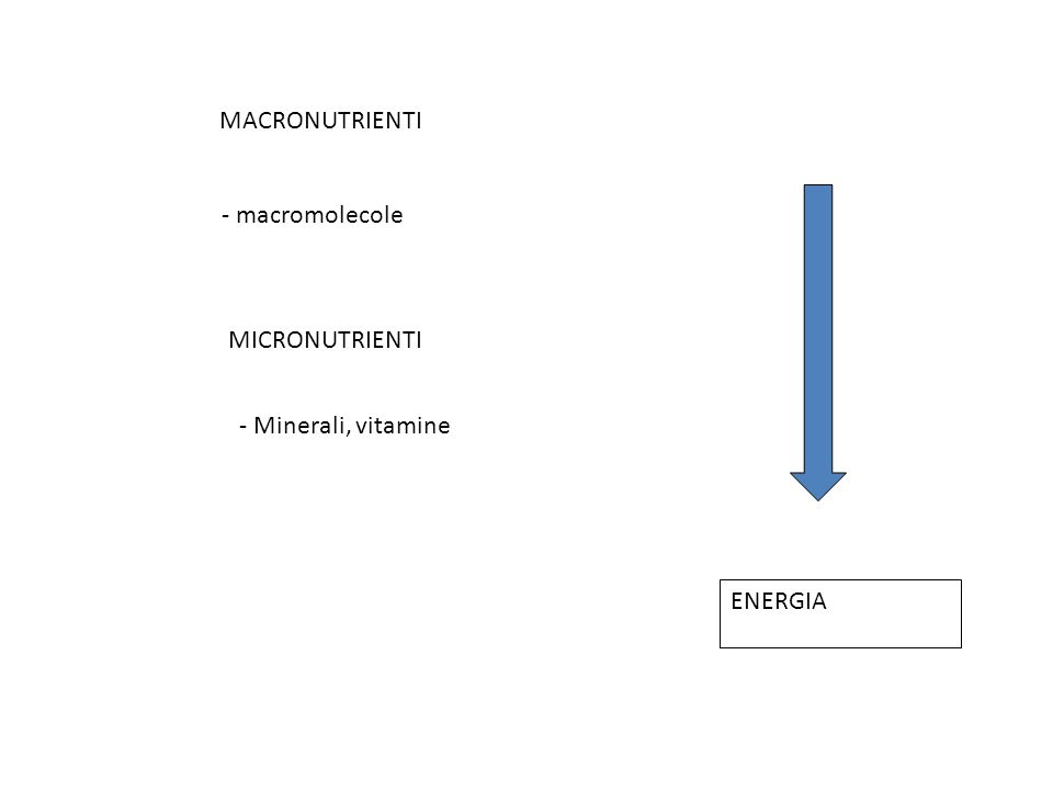 MACRONUTRIENTI - macromolecole MICRONUTRIENTI - Minerali, vitamine ENERGIA
