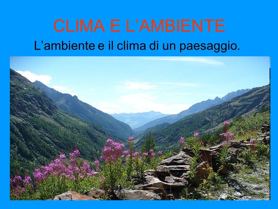 L'ambiente e il clima di un paesaggio.